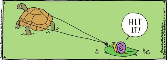turtle and snail comic strip