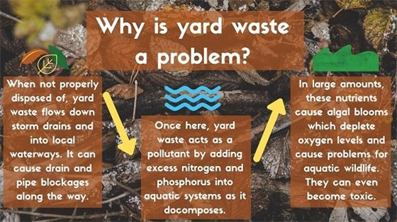 why yard waste is a problem for local waterways
