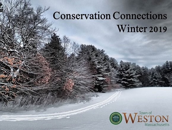conservation connections winter 2019 issue