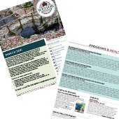 march newsletter pages