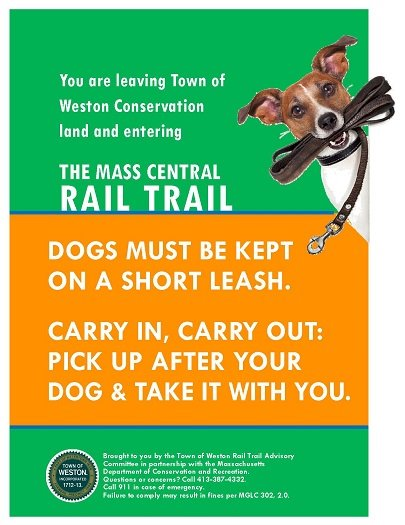 leash your dog when on the mcrt