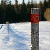 snow stake in foreground with snowy road in background