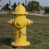 painted water hydrant