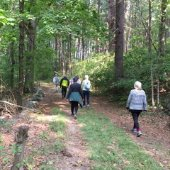 people on a hike in the woods