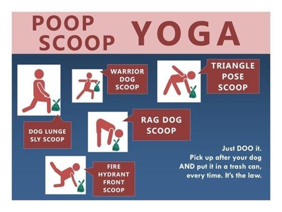 poop scoop yoga poses