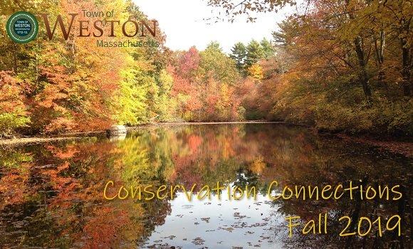 elliston pond in the fall