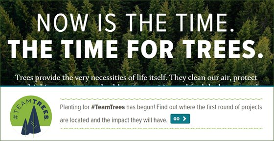 arbor day: now is the time for trees