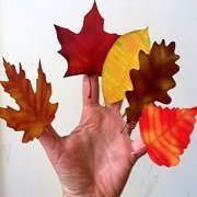 autumn leaves on five fingers