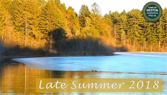 late summer - duck pond