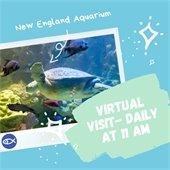Virtual Aquarium visit