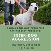 Inter Dog Aggression