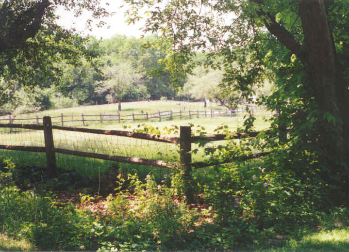 Shaded Fenced Area