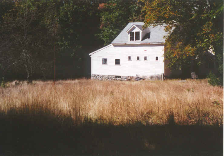 House in Background, Tallgrass in Foreground