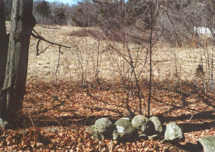 Small Rock Pile Next to Clearing