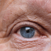 close up of a blue eye and wrinkled face